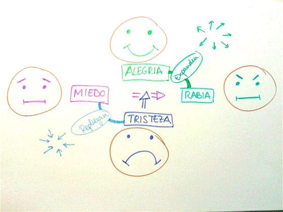 cuatro emociones